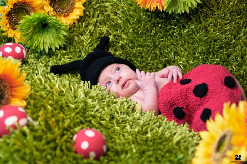 photographe naissance perenchies 1
